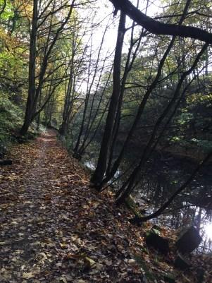 Leeds to Barnsley Canal