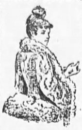 1890 Antique Fur Dress Fashions