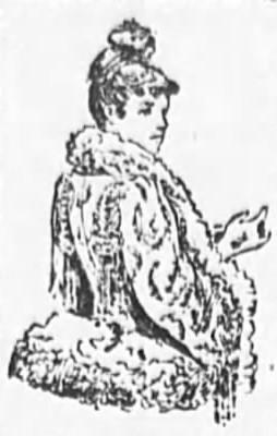 1890 Antique Fur Dress Fashions