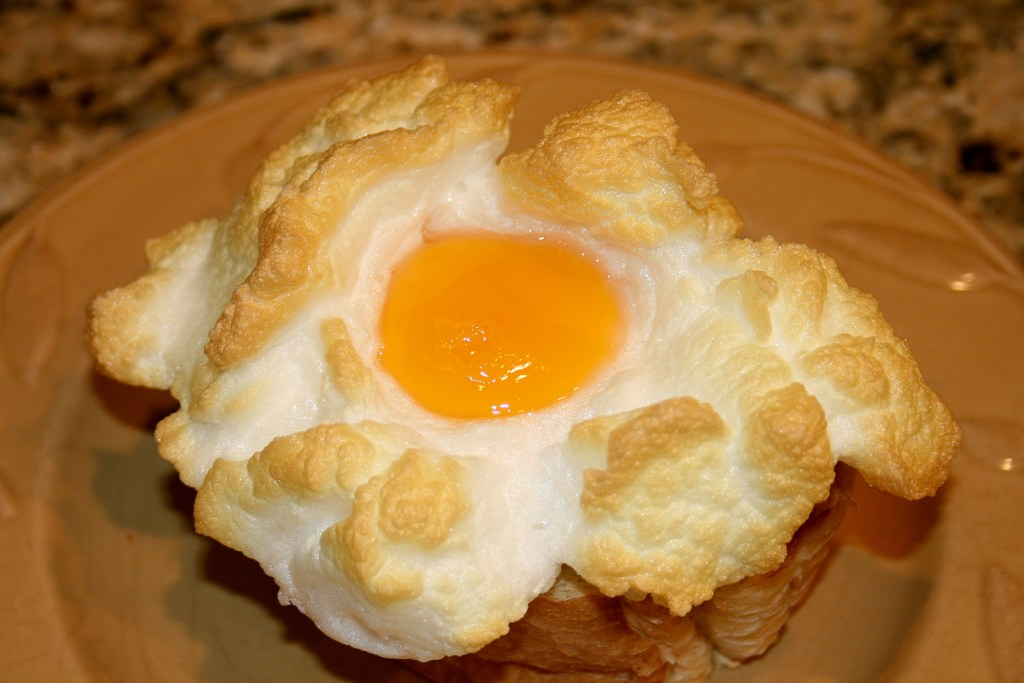 Eggs in a nest