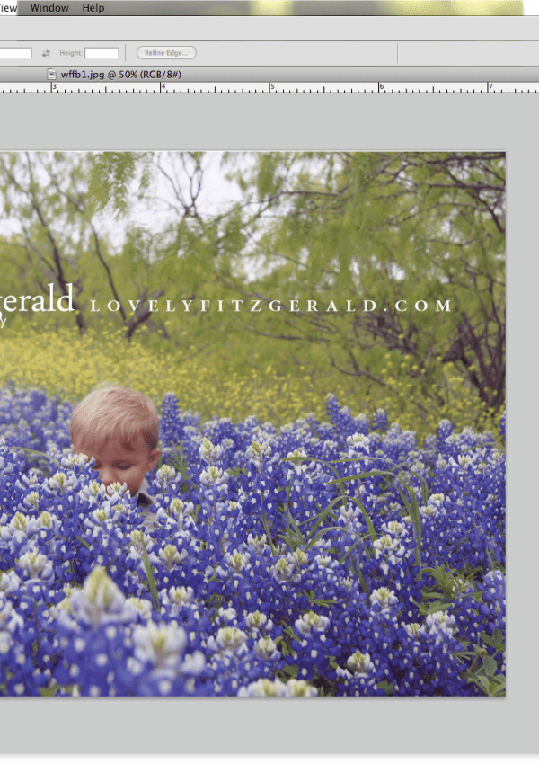 Resize your Images for the Web | Photoshop Friday | Dallas Baby Photographer