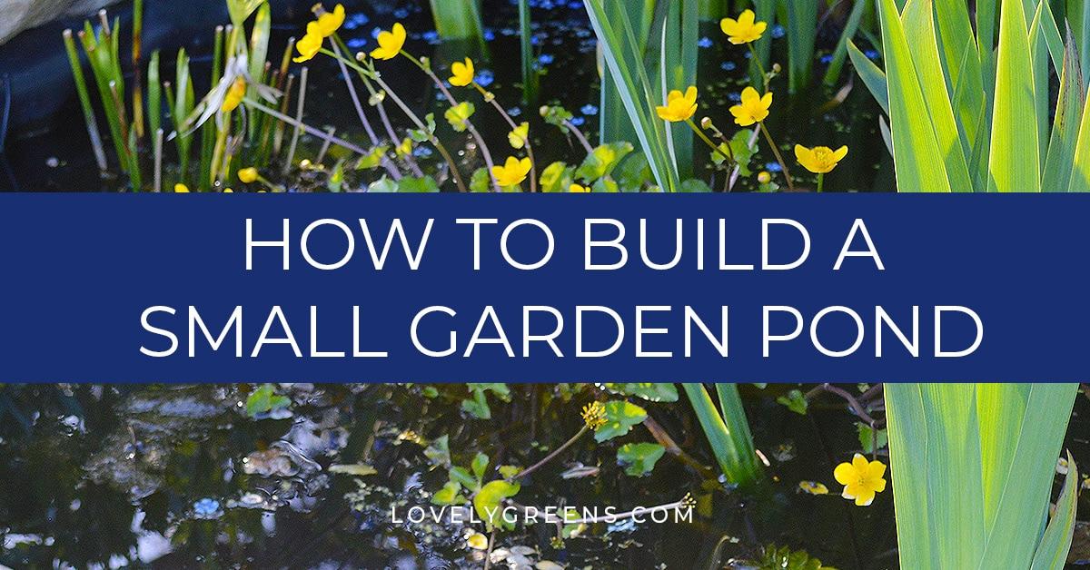 Build Your Own Garden Pond