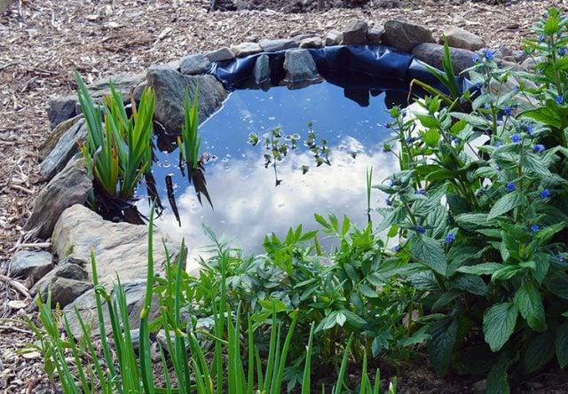Building Pond Slope