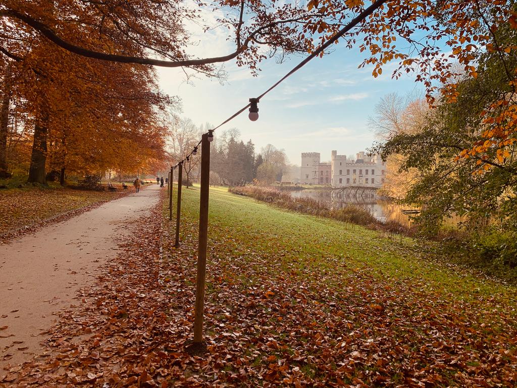 Read more about the article Promenade au jardin botanique de Meise
