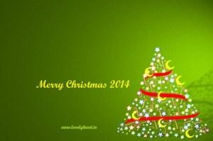 merry christmas birthday 2014