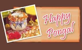 happy Pongal kerala 2015 wallpaper