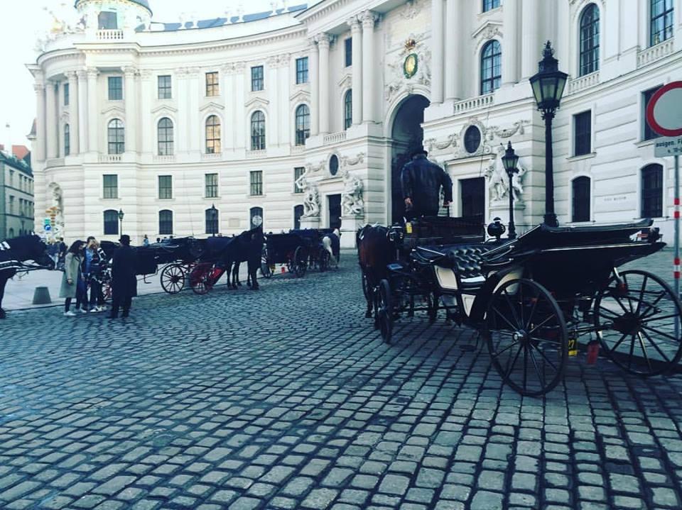5 Dias em Viena - Visão Geral