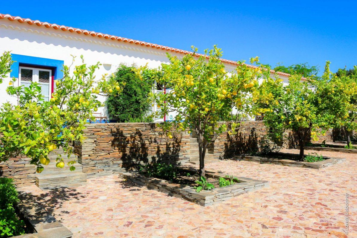 Naturarte campo turismo rural alentejo concelho de odemira