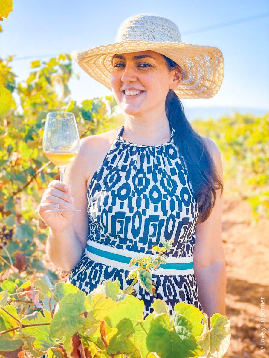 Enoturismo no Algarve - Quinta Morgado do Quintão - ©Lovely Lisbonner - Sónia Justo vinhos do algarve passeio nas vinhas
