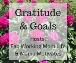 gratitude-goals-link-banner-2017