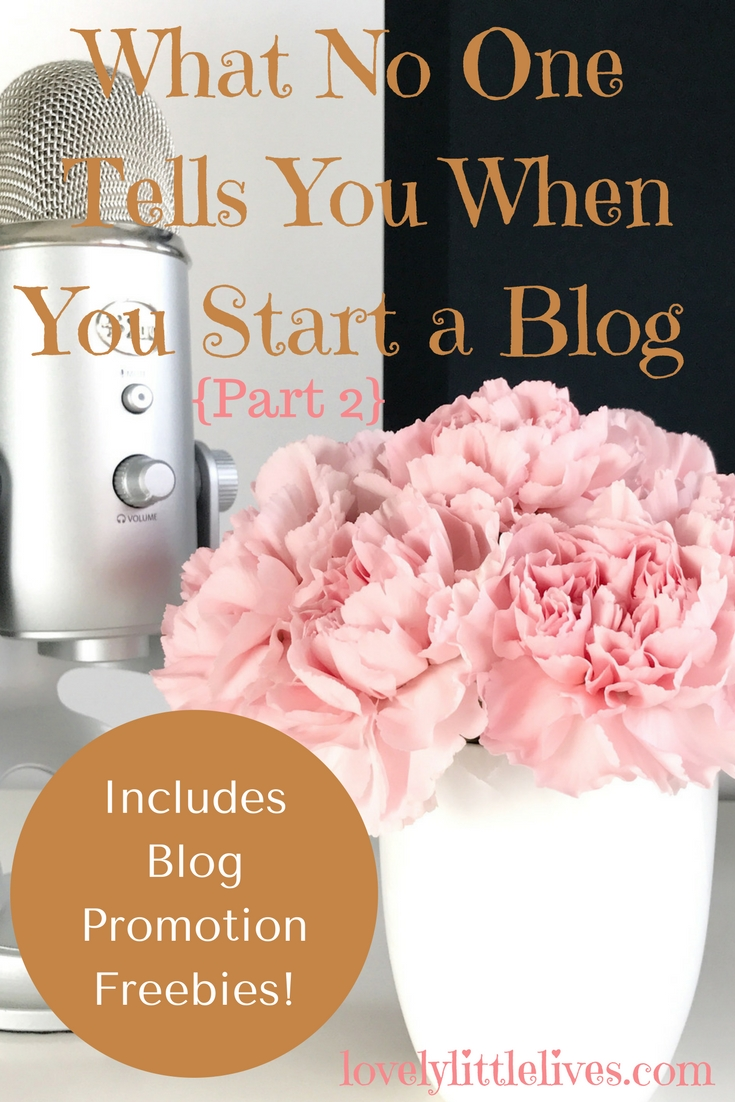 What no one tells you when you start a blog part 2