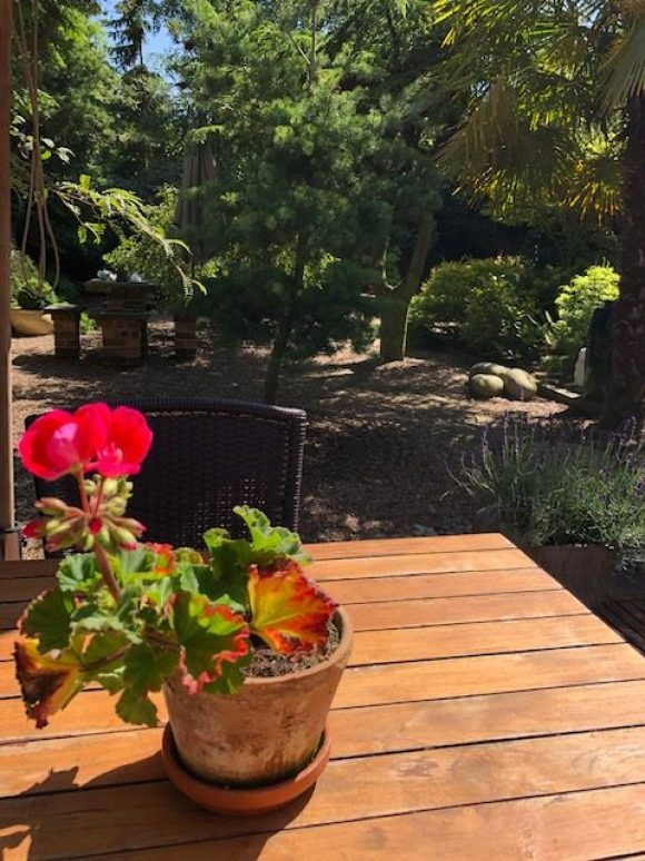 Tranquil garden at The Bottle Kiln West Hallam