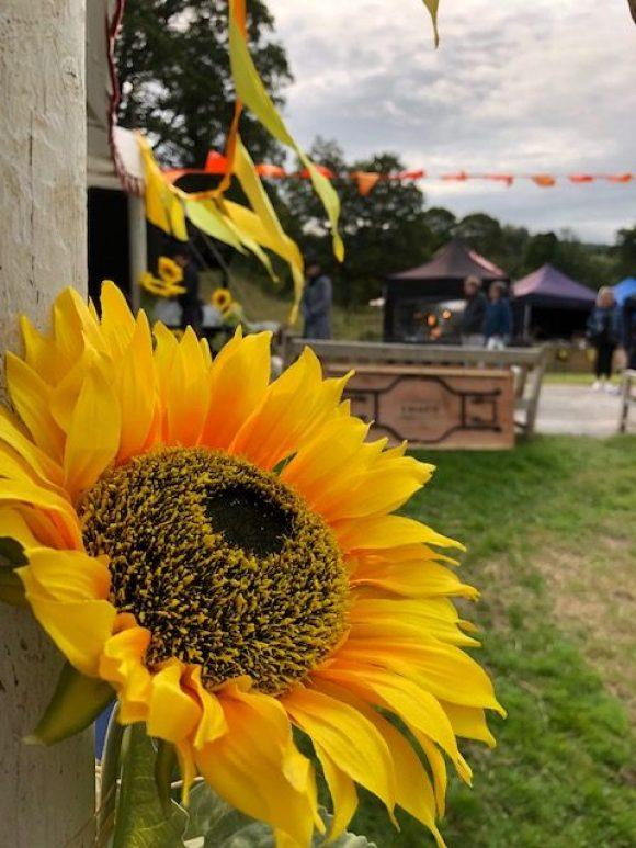 Haddon Hall artisan market sunflower