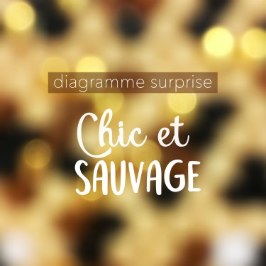 Diagramme surprise 2 - Chic et sauvage