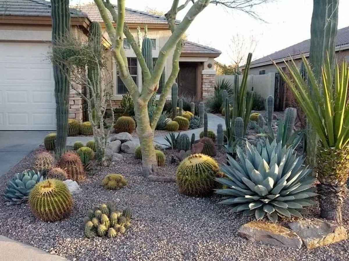 Cheap landscaping ideas for your front yard that will inspire you (26)