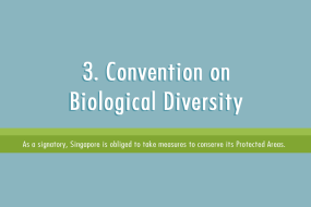 3. Convention on Biological Diversity