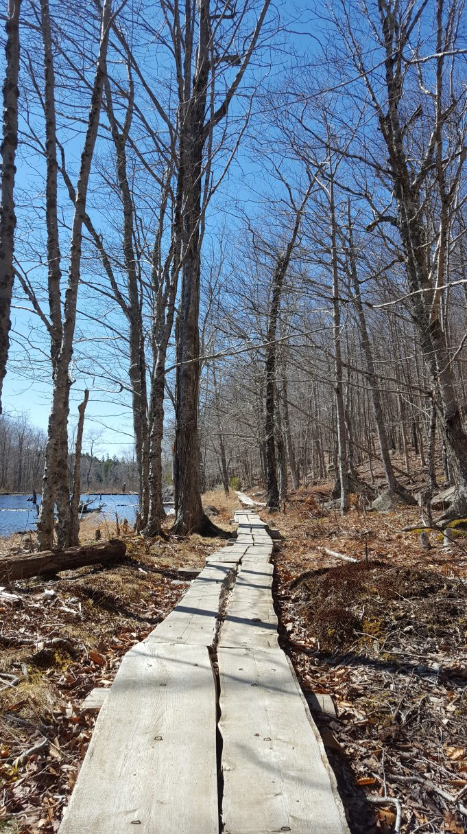 Kane Path in April