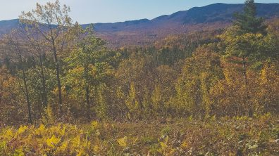 Tumbledown Mountain, Maine, hikes in Maine, best hikes in Maine