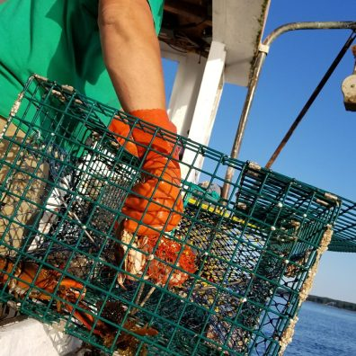 catch your own lobster, maine lobster, private boat, rivate boat Maine, private lobster boat