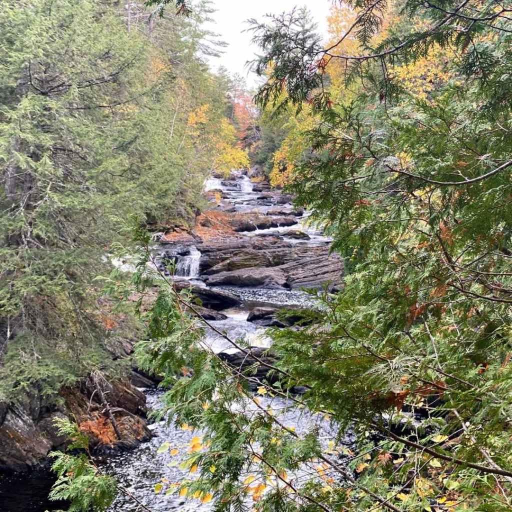 Moxie Falls preview