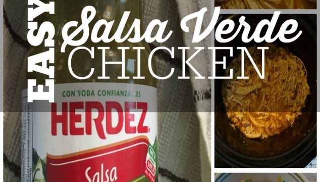 Dia del Nino Celebrate with Salsa Verde Chicken