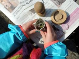 Sådan laver du selv potter til frøspiring af avispapir