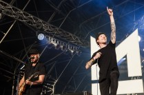 2000 Trees Friday | Mallory Knox