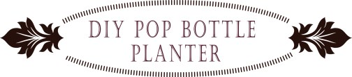 DIY Pop Bottle Planter | Love My DIY Home