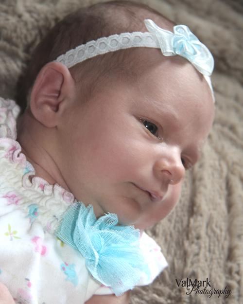 Diy newborn photo session love my diy home do your own newborn photos love my diy home solutioingenieria Gallery