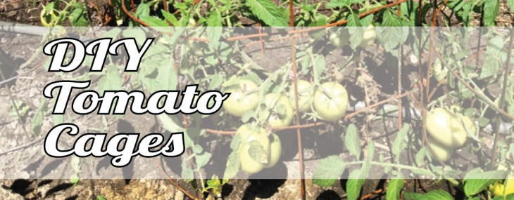 DIY Tomato Cages – Save the Maters!
