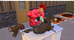 2019-01-05 15_46_39-The Sims™ 4