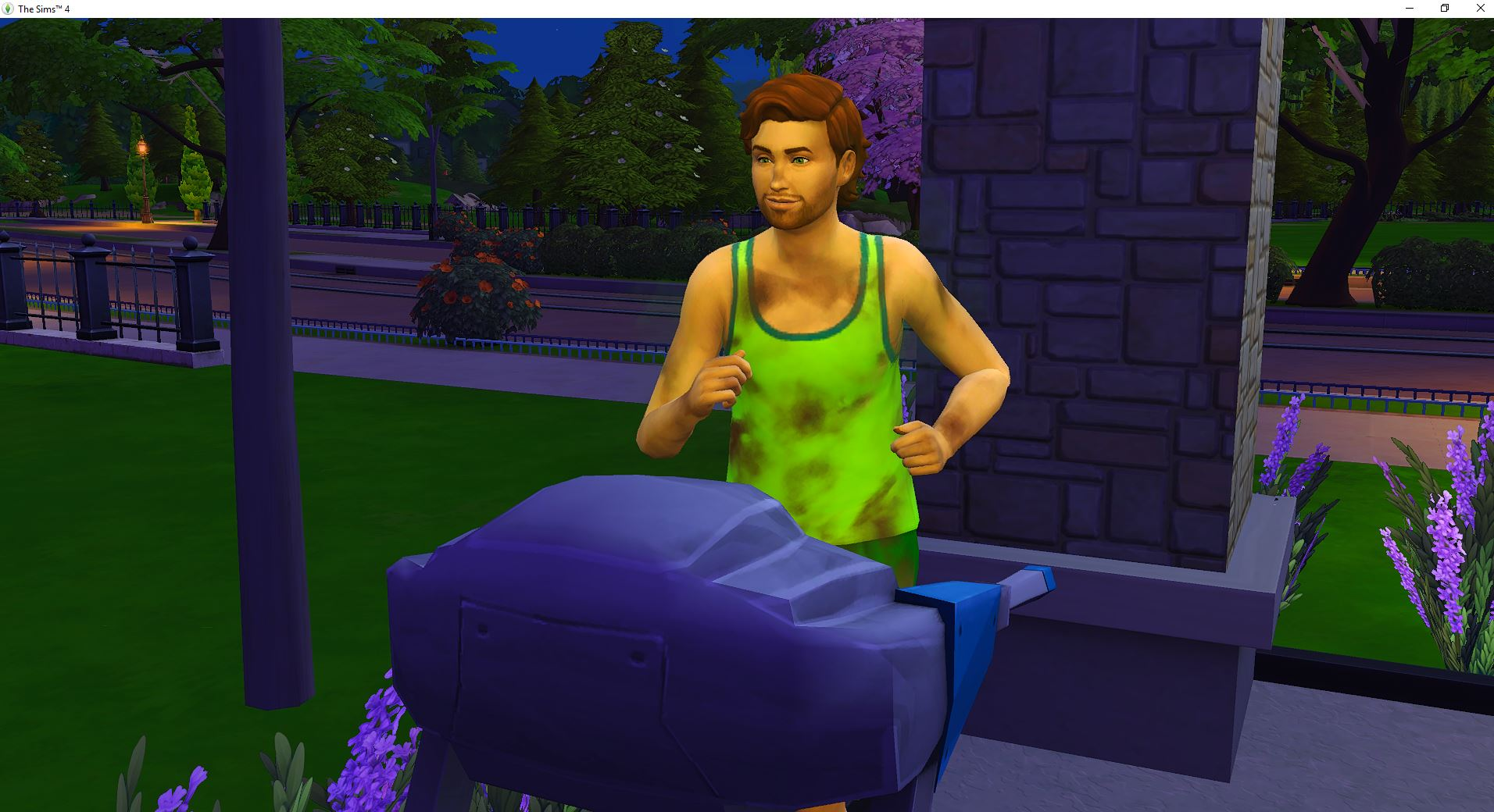 2019-01-06 18_57_48-The Sims™ 4