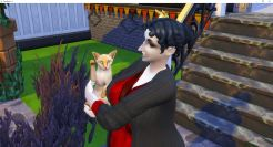 2019-02-17 18_10_56-The Sims™ 4