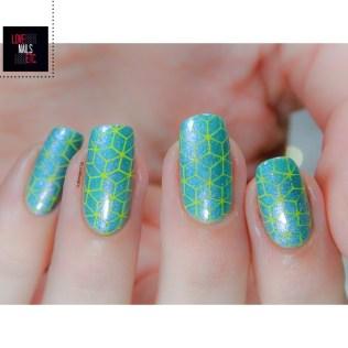 SM Turquoise & Yellow5