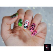 Stamping Master - Flamingo feathers