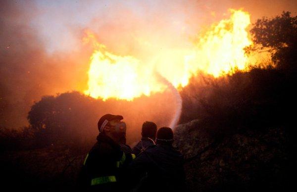 Самый крупный лесной пожар в истории Израиля | ФОТО НОВОСТИ