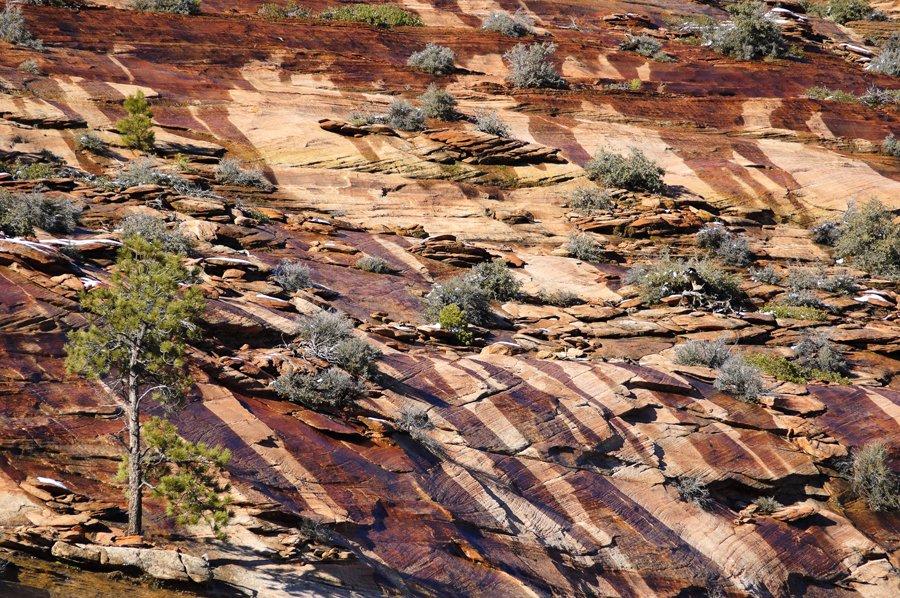 Национальный парк Зайон в штате Юта