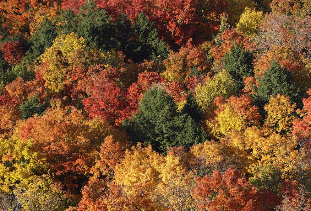 Невероятные краски в парке Thacher State Park