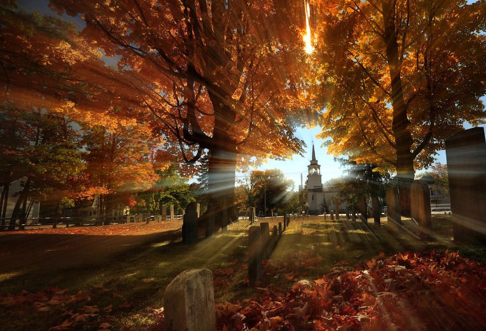 Осень заканчивается, впереди — зима