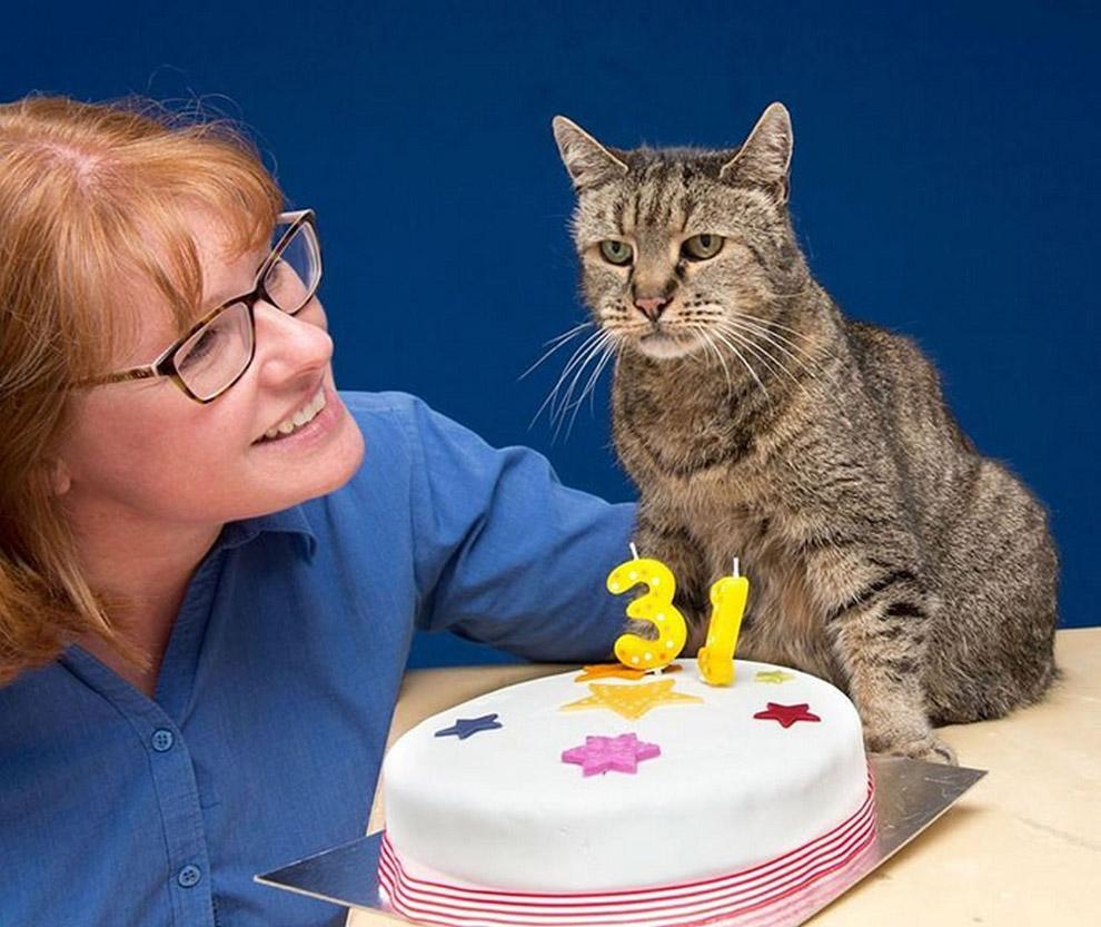 Самый старый в мире кот по имени Натмег