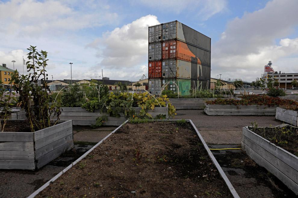 Садовое общество и грядки в Гетеборге, Швеция
