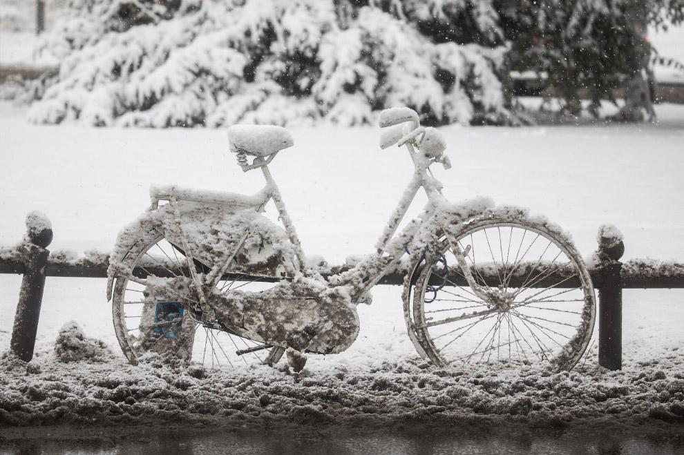 Припарковался на зиму, Западная Германия