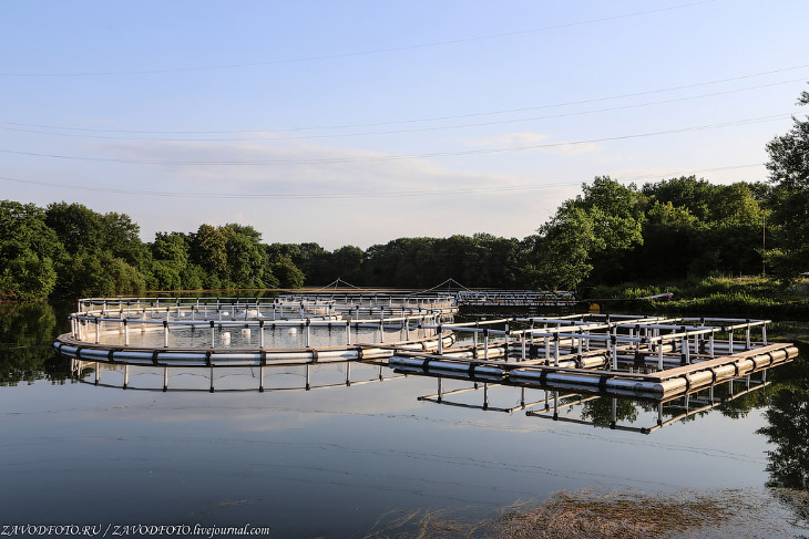 ГЭС, которая работает на родниковой воде