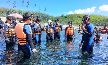 澎湖(ポンフー)の海を守るサンゴの植林活動と生態旅行