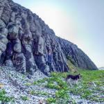 崖下プライベートビーチと柱状玄武岩