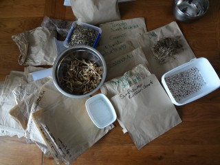 Seed saving at LPL HQ
