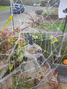 My Halloween webs and spiders