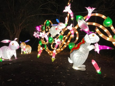Magical Lantern rabbits