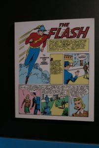 DC Exhibition Flash
