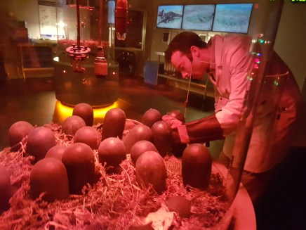 Dinos in the Wild eggs